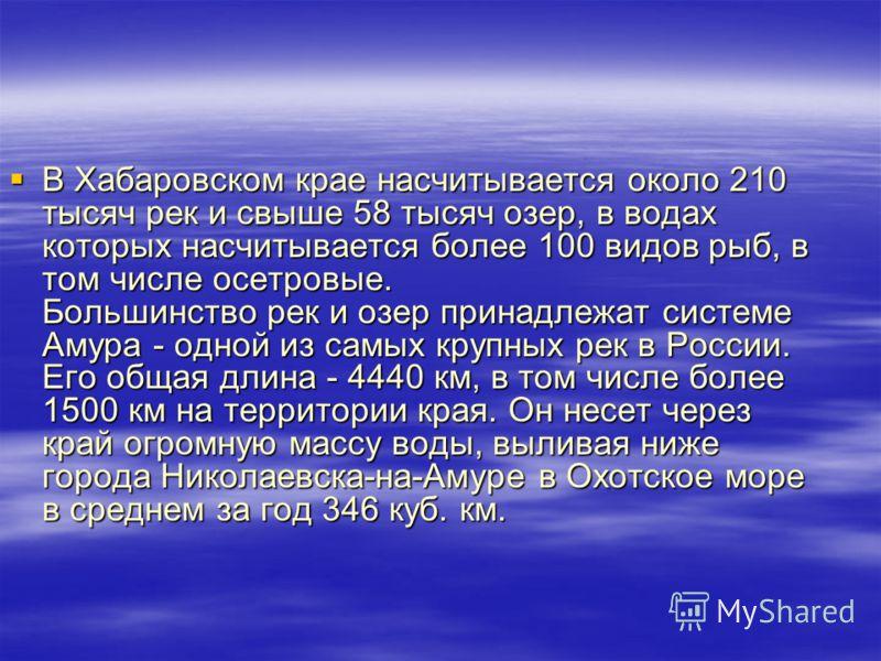 В Хабаровском крае насчитывается около 210 тысяч рек и свыше 58 тысяч озер, в водах которых насчитывается более 100 видов рыб, в том числе осетровые. Большинство рек и озер принадлежат системе Амура - одной из самых крупных рек в России. Его общая дл