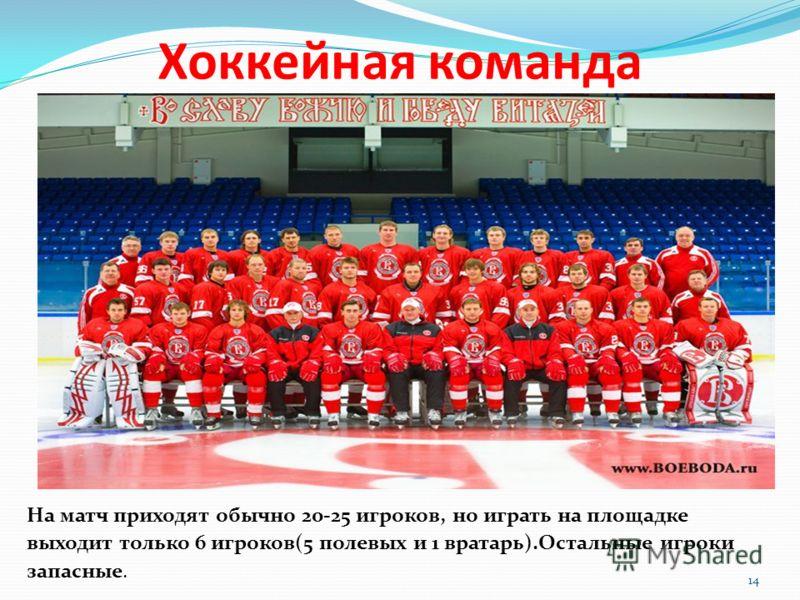 Хоккейная команда На матч приходят обычно 20-25 игроков, но играть на площадке выходит только 6 игроков(5 полевых и 1 вратарь).Остальные игроки запасные. 14