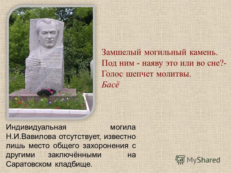 Индивидуальная могила Н.И.Вавилова отсутствует, известно лишь место общего захоронения c другими заключёнными на Саратовском кладбище. Замшелый могильный камень. Под ним - наяву это или во сне?- Голос шепчет молитвы. Басё
