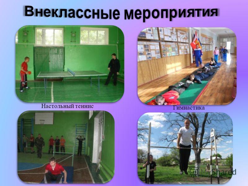 Настольный теннис Гимнастика