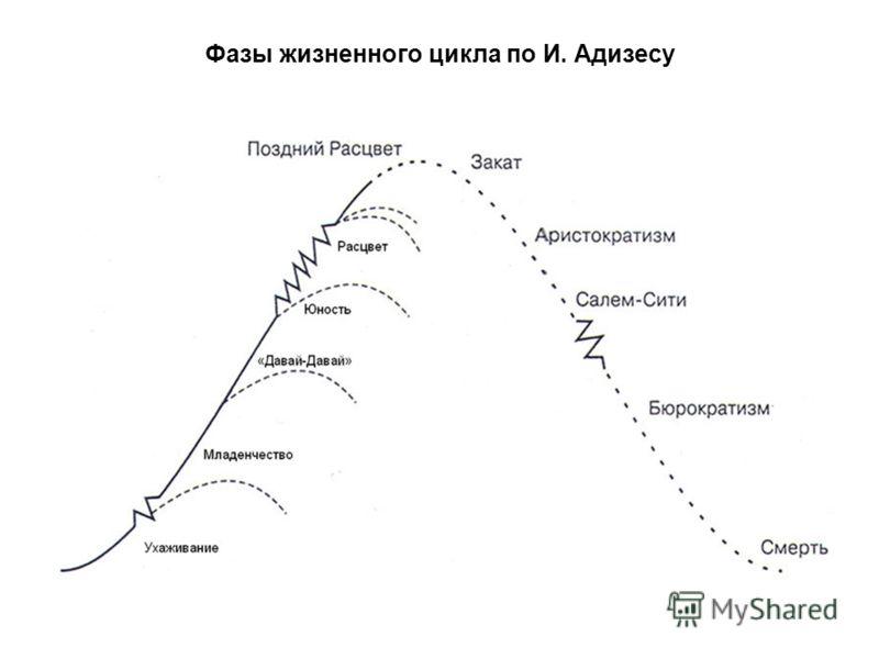 Фазы жизненного цикла по И. Адизесу