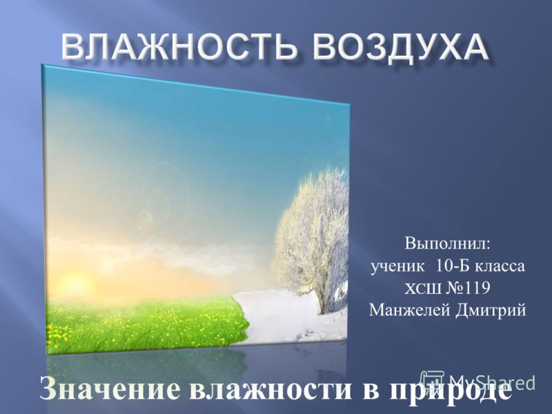 Значение влажности в природе Выполнил : ученик 10- Б класса ХСШ 119 Манжелей Дмитрий