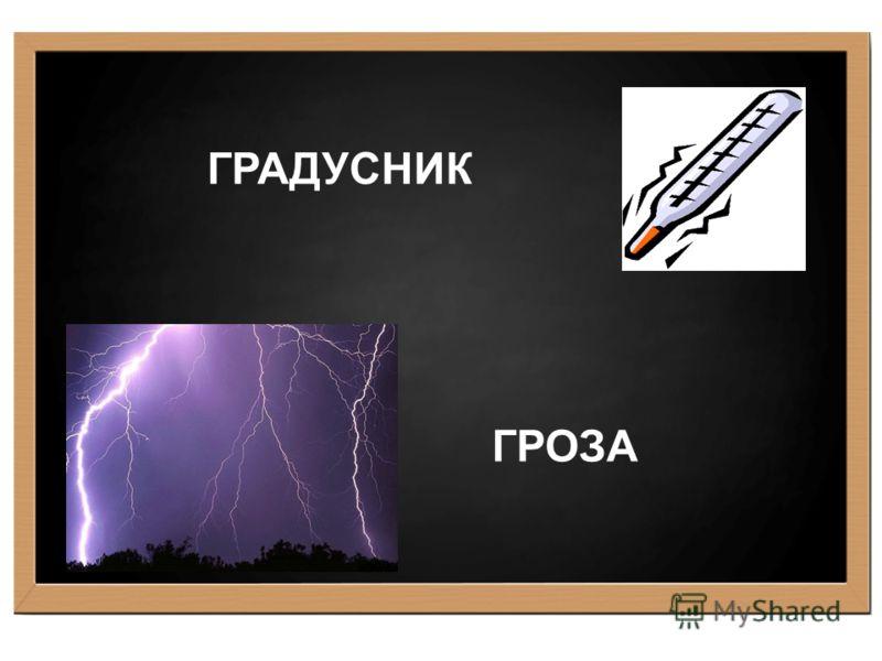 ГРАДУСНИК ГРОЗА