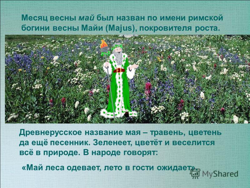 Месяц весны май был назван по имени римской богини весны Майи (Majus), покровителя роста. Древнерусское название мая – травень, цветень да ещё песенник. Зеленеет, цветёт и веселится всё в природе. В народе говорят: «Май леса одевает, лето в гости ожи