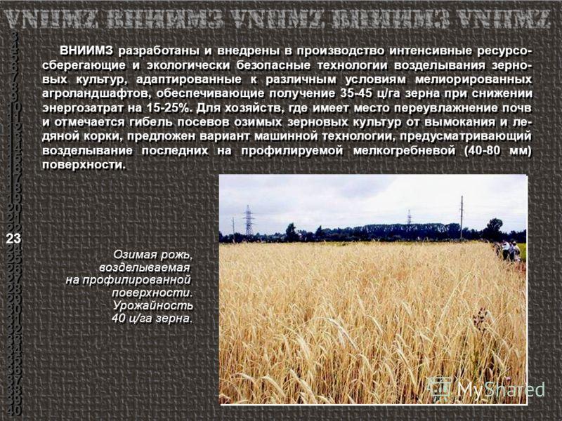 ВНИИМЗ разработаны и внедрены в производство интенсивные ресурсо- сберегающие и экологически безопасные технологии возделывания зерно- вых культур, адаптированные к различным условиям мелиорированных агроландшафтов, обеспечивающие получение 35-45 ц/г
