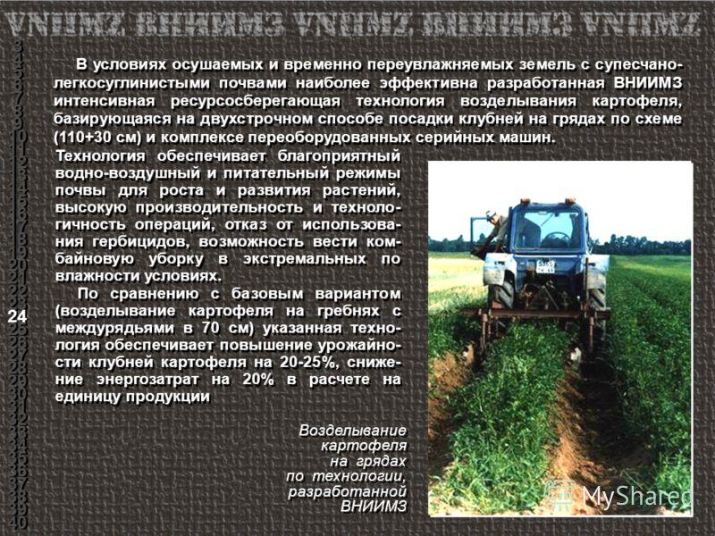 Возделывание картофеля на грядах по технологии, разработанной ВНИИМЗ Возделывание картофеля на грядах по технологии, разработанной ВНИИМЗ В условиях осушаемых и временно переувлажняемых земель с супесчано- легкосуглинистыми почвами наиболее эффективн