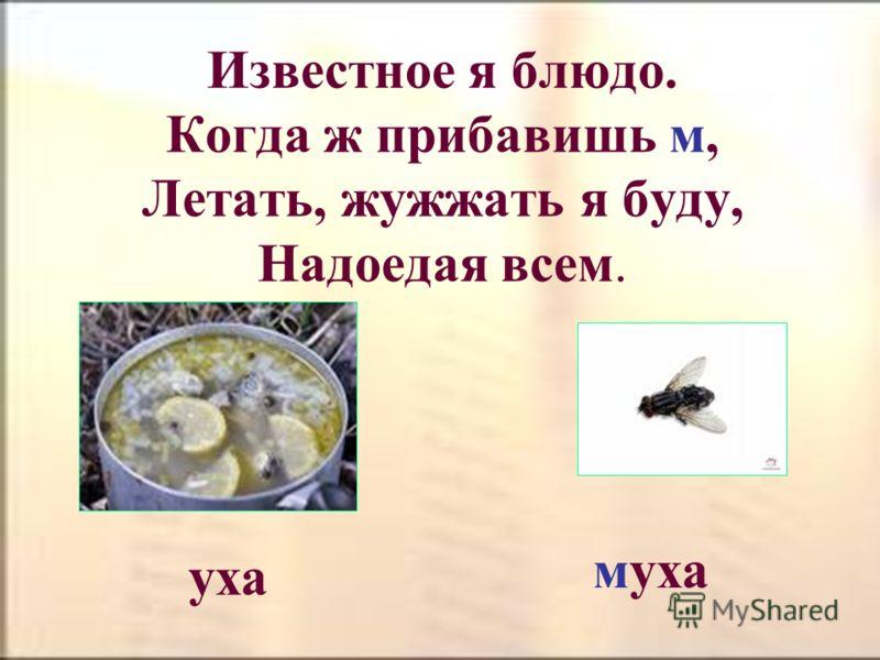 Отними у насекомого одну букву – появится рыба клещ лещ