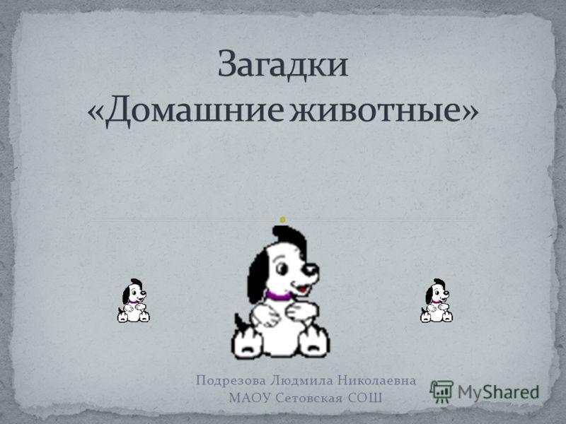 Подрезова Людмила Николаевна МАОУ Сетовская СОШ