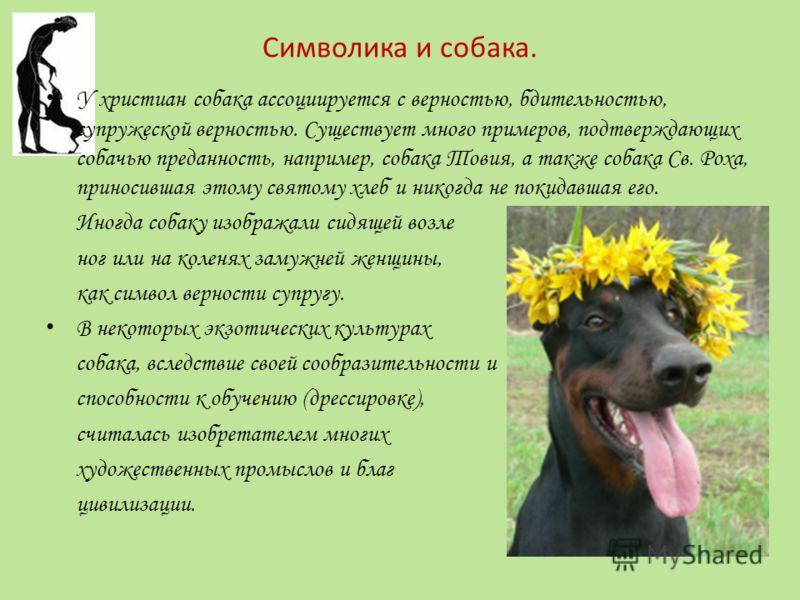 Символика и собака. У христиан собака ассоциируется с верностью, бдительностью, супружеской верностью. Существует много примеров, подтверждающих собачью преданность, например, собака Товия, а также собака Св. Роха, приносившая этому святому хлеб и ни