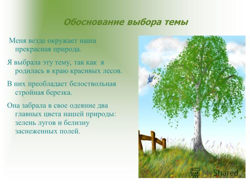 Обоснование выбора темы Меня везде окружает наша прекрасная природа. Я выбрала эту тему, так как я родилась в краю красивых лесов. В них преобладает белоствольная стройная березка. Она забрала в свое одеяние два главных цвета нашей природы: зелень лу