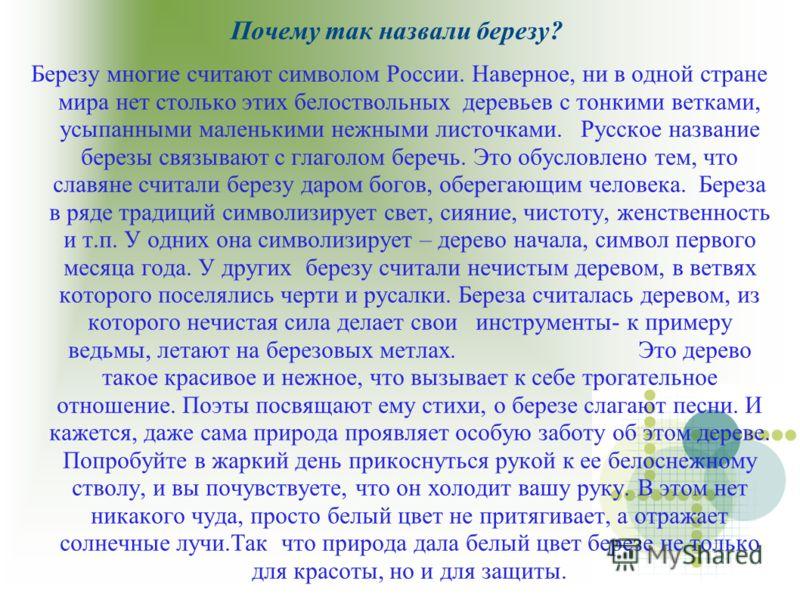 Почему так назвали березу? Березу многие считают символом России. Наверное, ни в одной стране мира нет столько этих белоствольных деревьев с тонкими ветками, усыпанными маленькими нежными листочками. Русское название березы связывают с глаголом береч