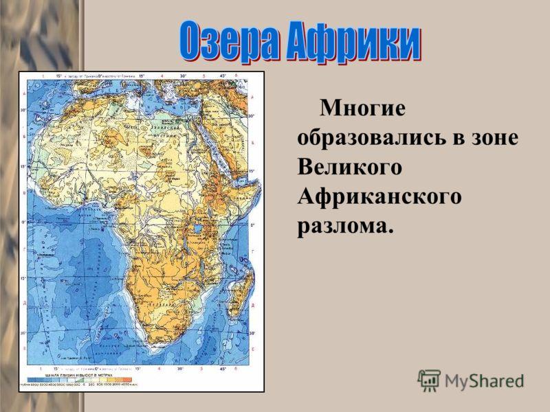 Многие образовались в зоне Великого Африканского разлома.