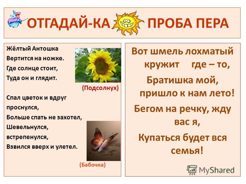 ОТГАДАЙ-КА ПРОБА ПЕРА Жёлтый Антошка Вертится на ножке. Где солнце стоит, Туда он и глядит. (Подсолнух) Спал цветок и вдруг проснулся, Больше спать не захотел, Шевельнулся, встрепенулся, Взвился вверх и улетел. (Бабочка) Вот шмель лохматый кружит где