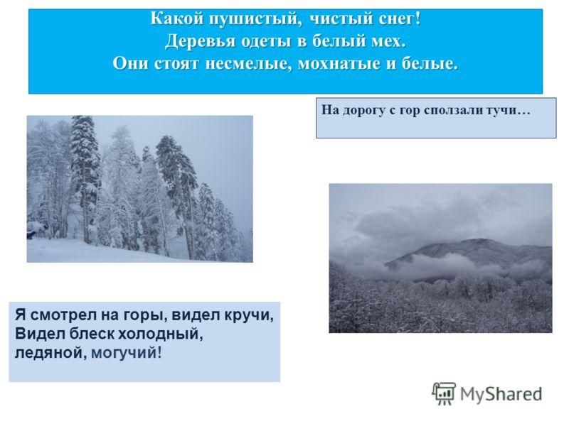 Какой пушистый, чистый снег! Деревья одеты в белый мех. Они стоят несмелые, мохнатые и белые. На дорогу с гор сползали тучи… Я смотрел на горы, видел кручи, Видел блеск холодный, ледяной, могучий!