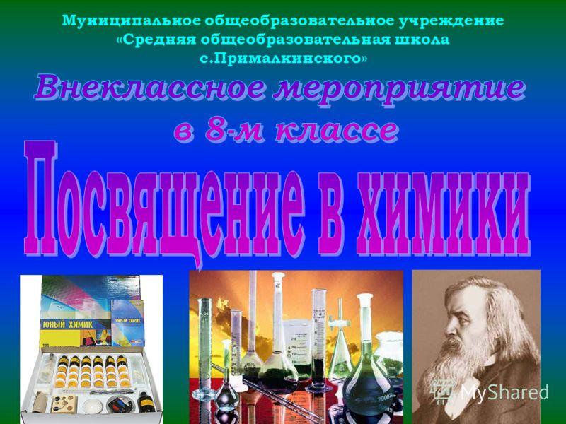 Муниципальное общеобразовательное учреждение «Средняя общеобразовательная школа с.Прималкинского»