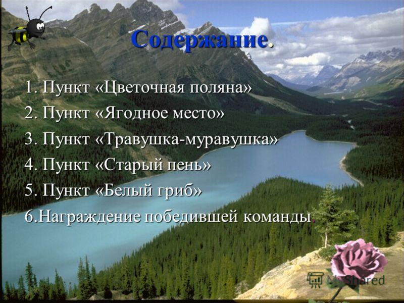 Воспитатель ГПД МОУ СОШ с. М-Колодезь Пилюгина Е.С. Долгоруковский район