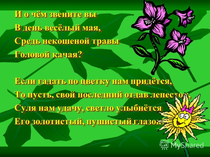 Пункт «Цветочная поляна» Вопросы и задания: 1.Назвать полевые цветы в коллекции. 1.Назвать полевые цветы в коллекции. 2. Отгадать загадки о цветах 2. Отгадать загадки о цветах На высокой хрупкой ножке На высокой хрупкой ножке Вырос шарик у дорожки. В