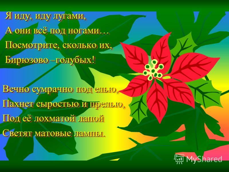 И о чём звените вы В день весёлый мая, Средь некошеной травы Головой качая? Если гадать по цветку нам придётся, То пусть, свой последний отдав лепесток, Суля нам удачу, светло улыбнётся Его золотистый, пушистый глазок! И о чём звените вы В день весёл