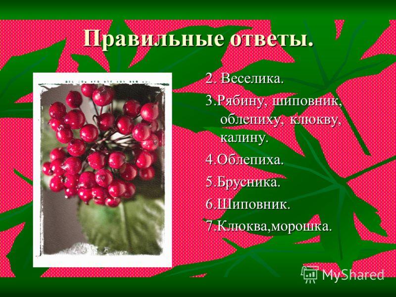 5.Какая ягода и листочки зелёными до весны сберегает? 6.Чай заваренный с этой ягодой, ароматный, густой, вкусный и очень полезный для здоровья? 7.Какие ягоды растут во мху на болотах?