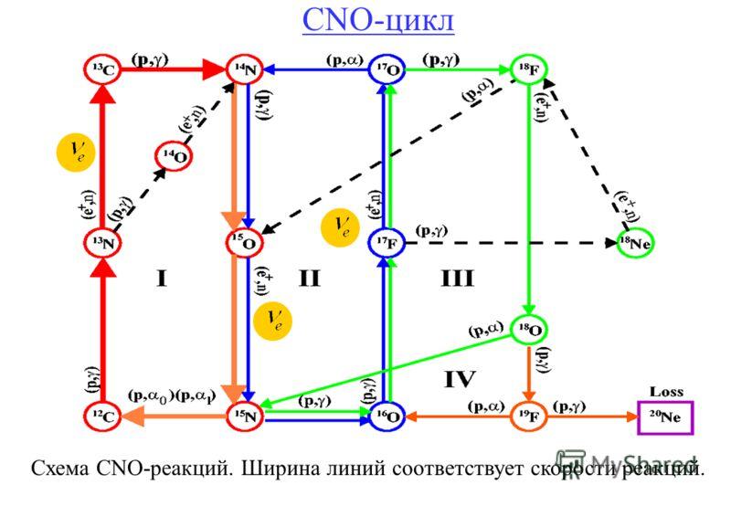 CNO-цикл a a Схема CNO-реакций. Ширина линий соответствует скорости реакций.