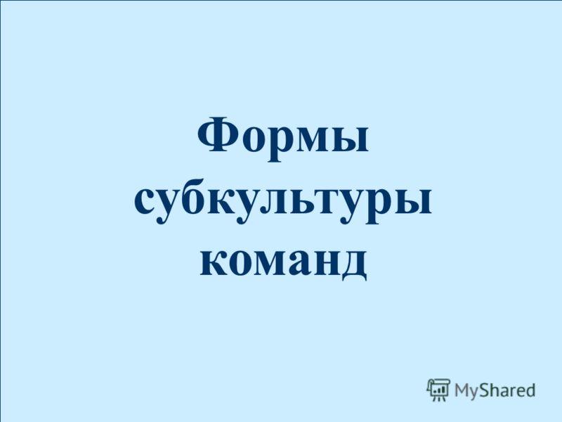 2005 Плотников Михаил Формы субкультуры команд