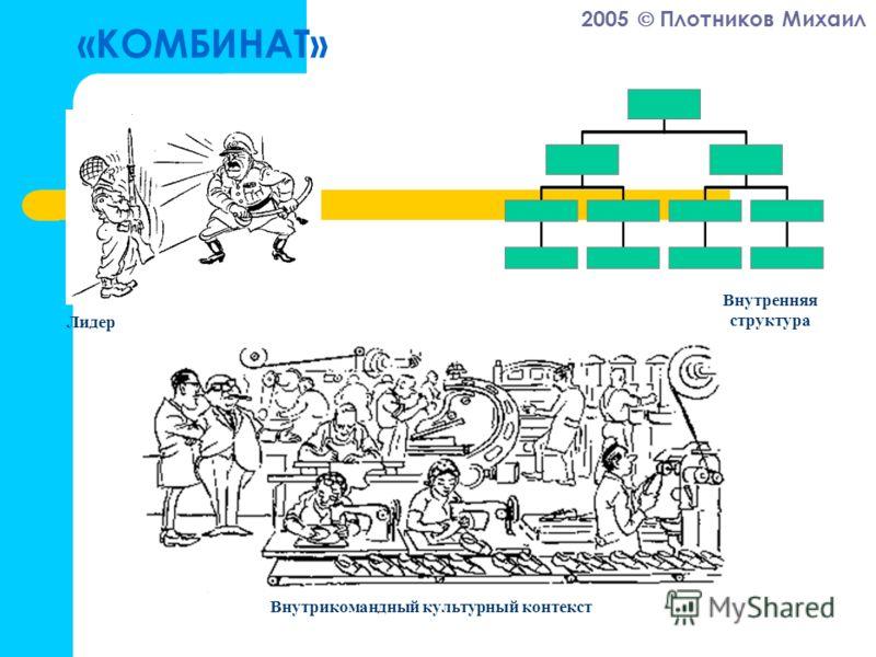 2005 Плотников Михаил «КОМБИНАТ» Лидер Внутрикомандный культурный контекст Внутренняя структура