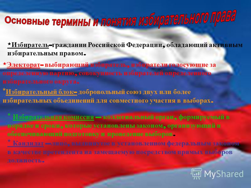 * Избиратель - гражданин Российской Федерации, обладающий активным избирательным правом. * Электорат - выбирающий избиратель, избиратели голосующие за определенную партию, совокупность избирателей определенного избирательного округа. * Избирательный