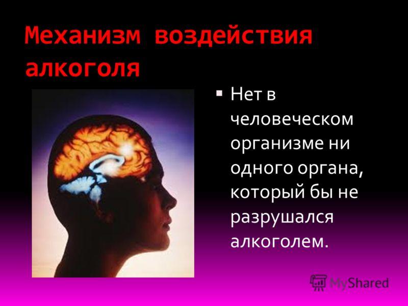Механизм воздействия алкоголя Нет в человеческом организме ни одного органа, который бы не разрушался алкоголем.