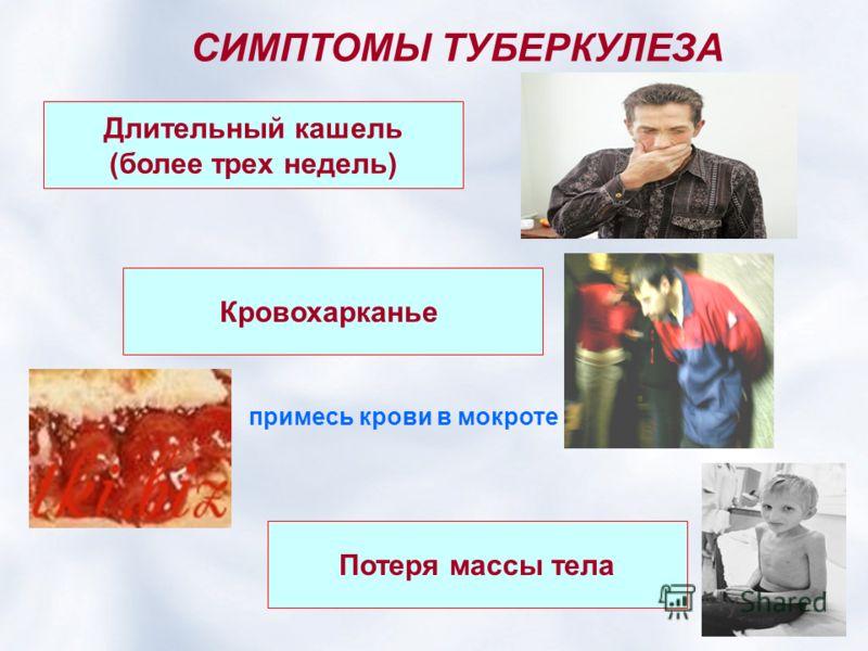 СИМПТОМЫ ТУБЕРКУЛЕЗА Длительный кашель (более трех недель) Потеря массы тела Кровохарканье примесь крови в мокроте