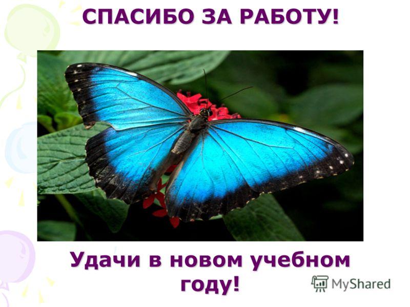 СПАСИБО ЗА РАБОТУ! Удачи в новом учебном году!