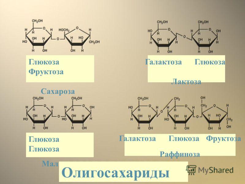 Глюкоза Фруктоза Сахароза Галактоза Глюкоза Лактоза Глюкоза Мальтоза Галактоза Глюкоза Фруктоза Раффиноза Олигосахариды