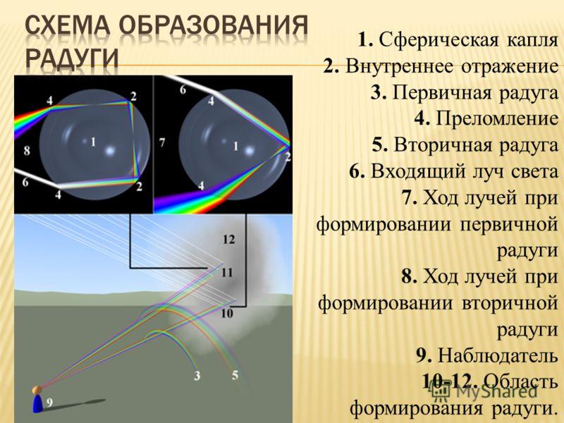 1. Сферическая капля 2. Внутреннее отражение 3. Первичная радуга 4. Преломление 5. Вторичная радуга 6. Входящий луч света 7. Ход лучей при формировании первичной радуги 8. Ход лучей при формировании вторичной радуги 9. Наблюдатель 10-12. Область форм