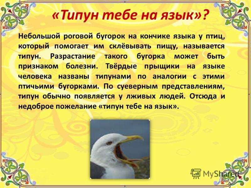 Небольшой роговой бугорок на кончике языка у птиц, который помогает им склёвывать пищу, называется типун. Разрастание такого бугорка может быть признаком болезни. Твёрдые прыщики на языке человека названы типунами по аналогии с этими птичьими бугорка