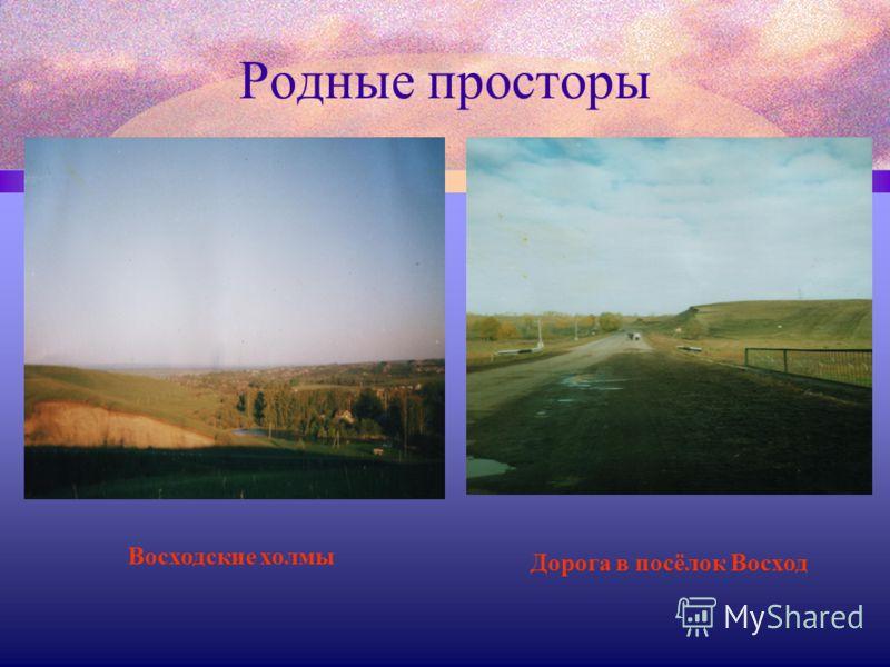 Родные просторы Восходские холмы Дорога в посёлок Восход