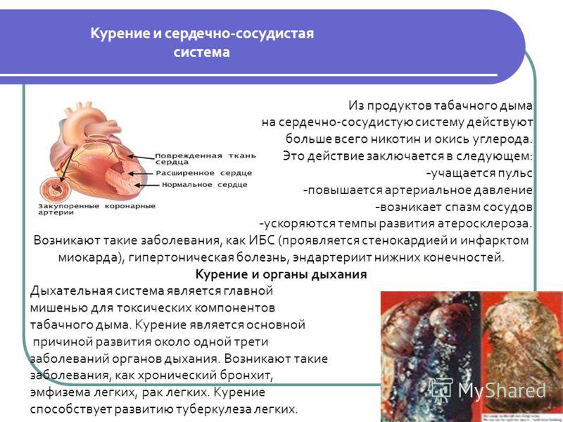Из продуктов табачного дыма на сердечно-сосудистую систему действуют больше всего никотин и окись углерода. Это действие заключается в следующем: - учащается пульс - повышается артериальное давление - возникает спазм сосудов - ускоряются темпы развит