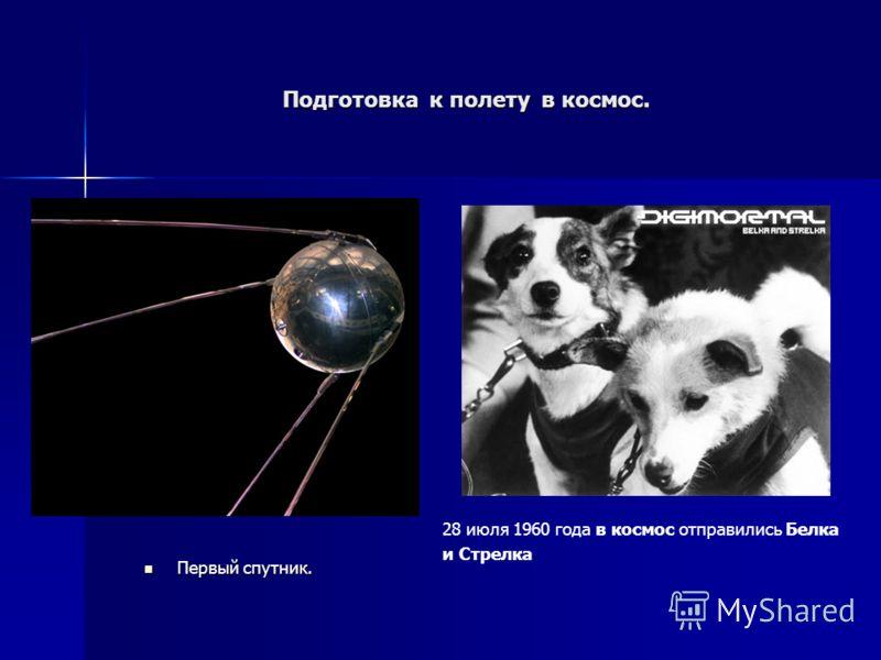 Подготовка к полету в космос. Первый спутник. Первый спутник. 28 июля 1960 года в космос отправились Белка и Стрелка