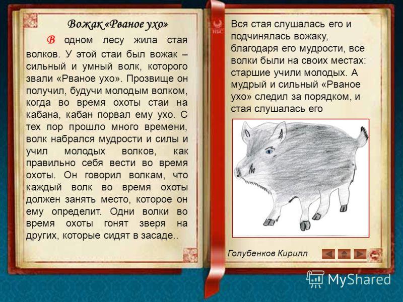 Голубенков Кирилл Вожак «Рваное ухо» В одном лесу жила стая волков. У этой стаи был вожак – сильный и умный волк, которого звали «Рваное ухо». Прозвище он получил, будучи молодым волком, когда во время охоты стаи на кабана, кабан порвал ему ухо. С те