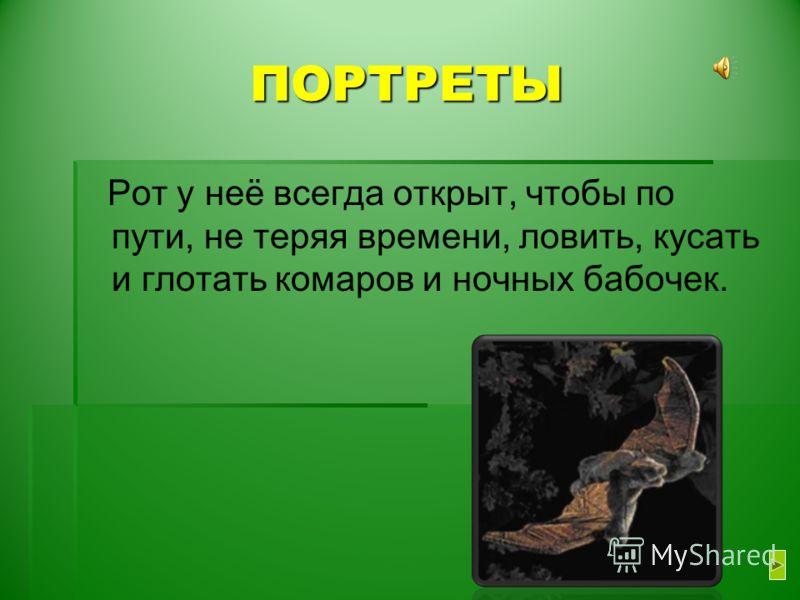 ПОРТРЕТЫ Рот у неё всегда открыт, чтобы по пути, не теряя времени, ловить, кусать и глотать комаров и ночных бабочек.