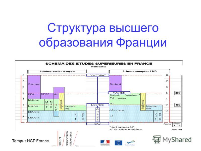 Tempus NCP France Структура высшего образования Франции
