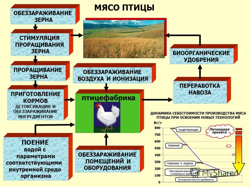 СТИМУЛЯЦИЯ ПРОРАЩИВАНИЯ ЗЕРНА птицефабрика ПРИГОТОВЛЕНИЕ КОРМОВ ДЕТОКСИКАЦИЯ И ОБЕЗЗАРАЖИВАНИЕ ИНГРЕДИЕНТОВ ПОЕНИЕ водой с параметрами соответствующими внутренней среде организма ОБЕЗЗАРАЖИВАНИЕ ПОМЕЩЕНИЙ И ОБОРУДОВАНИЯ ПРОРАЩИВАНИЕ ЗЕРНА ПЕРЕРАБОТКА