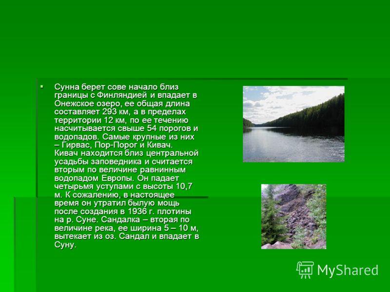 Сунна берет сове начало близ границы с Финляндией и впадает в Онежское озеро, ее общая длина составляет 293 км, а в пределах территории 12 км, по ее течению насчитывается свыше 54 порогов и водопадов. Самые крупные из них – Гирвас, Пор-Порог и Кивач.