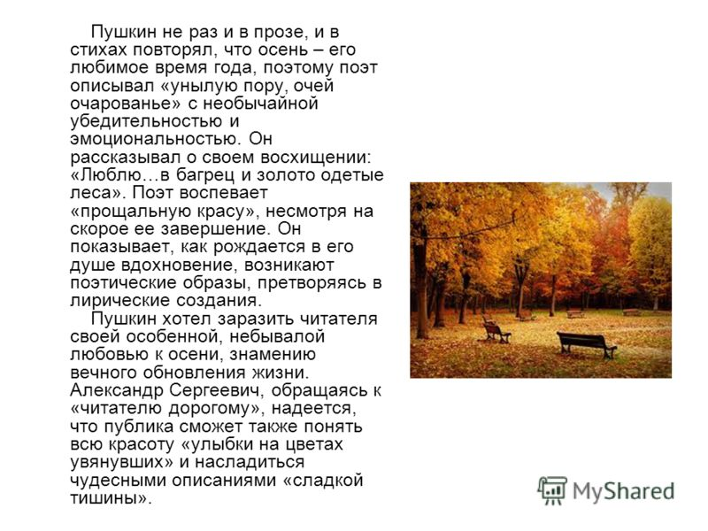 Пушкин не раз и в прозе, и в стихах повторял, что осень – его любимое время года, поэтому поэт описывал «унылую пору, очей очарованье» с необычайной убедительностью и эмоциональностью. Он рассказывал о своем восхищении: «Люблю…в багрец и золото одеты