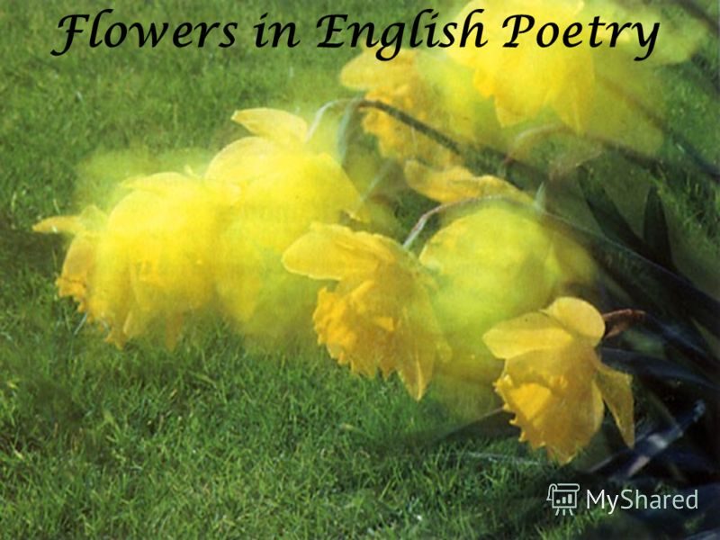 Flowers in English Poetry