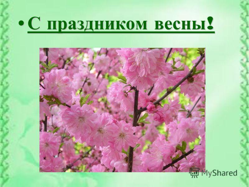 С праздником весны ! С праздником весны !