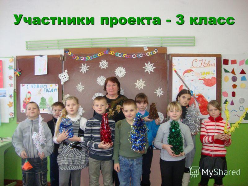 Участники проекта - 3 класс