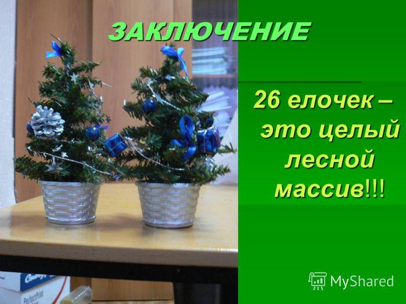 ЗАКЛЮЧЕНИЕ 26 елочек – это целый лесной массив!!!