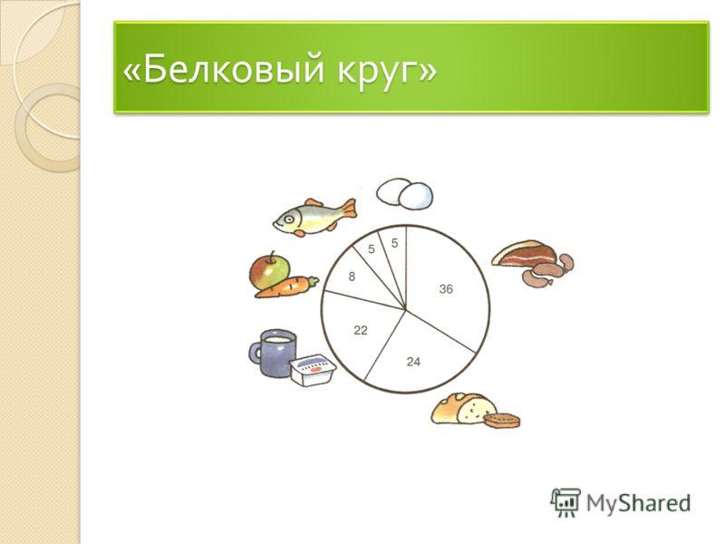 « Белковый круг »