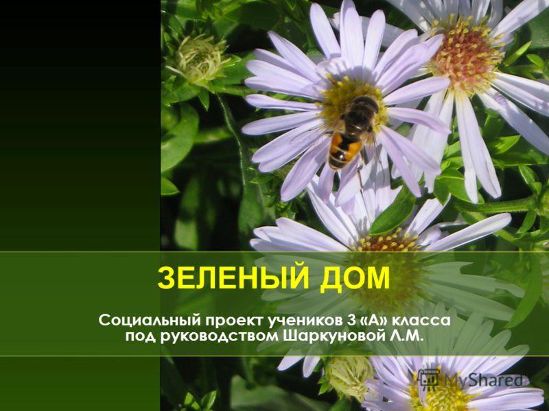 ЗЕЛЕНЫЙ ДОМ Социальный проект учеников 3 «А» класса под руководством Шаркуновой Л.М.