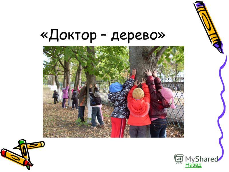 «Доктор – дерево» Назад