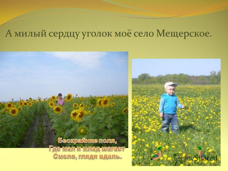 А милый сердцу уголок моё село Мещерское.